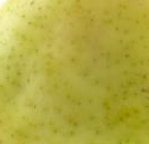 diced pear