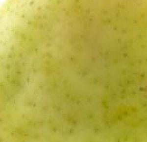 diced pear